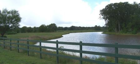 Lake in Fulshear Creek Crossing