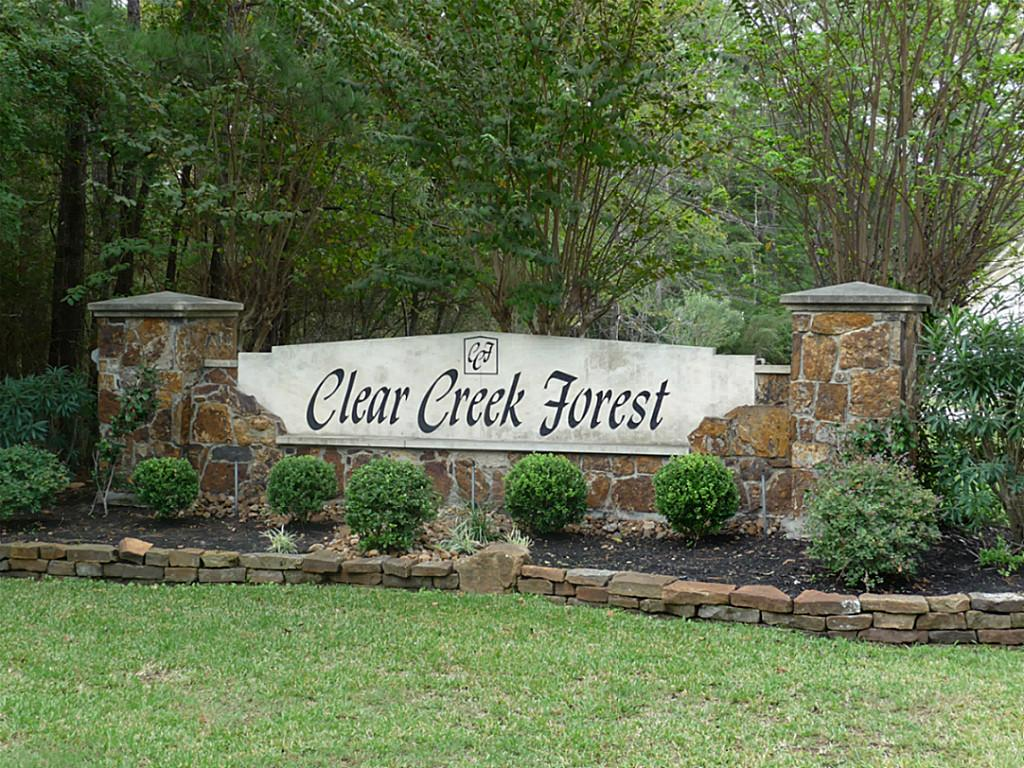 Clear Creek Forest